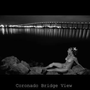 CoronadoBridgeView